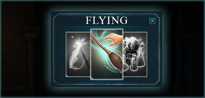 Flying Lessons Year 1 - Harry Potter Hogwarts Mystery
