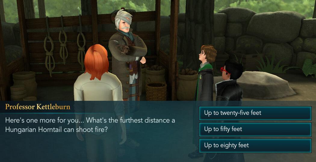 Harry Potter Hogwarts Mystery Walkthrough Year 5 Chapter 27