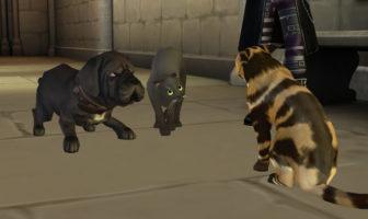 Harry Potter Hogwarts Mystery Walkthrough Year 2 Scaredy Cats Side Quest