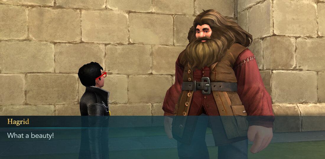 Harry Potter Hogwarts Mystery Horsing Around Year 2 Hagrid Friend