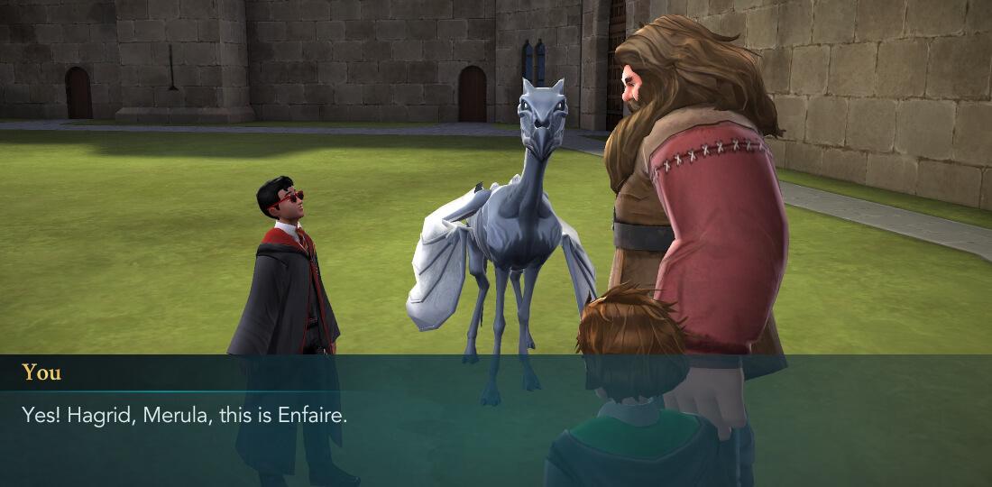 Harry Potter Hogwarts Mystery Walkthrough The Dark Horse Hagrid Friend