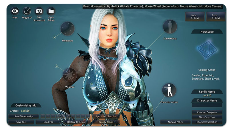 Black Desert Customization